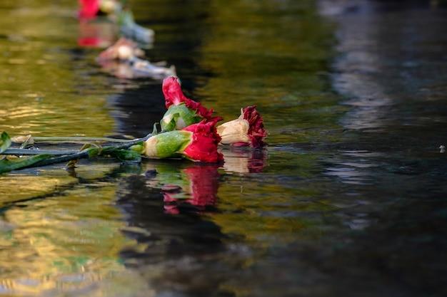 Rode verdorde anjers liggen op het natte stenen oppervlak, dode bloemen worden weerspiegeld in het water
