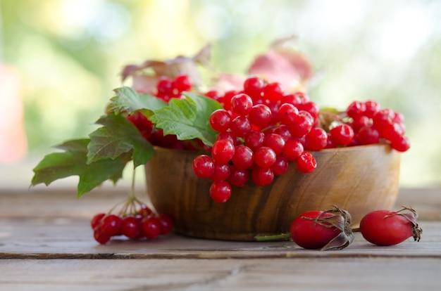 Rode viburnum bessen in houten kom op tafel met twee rozenbottels