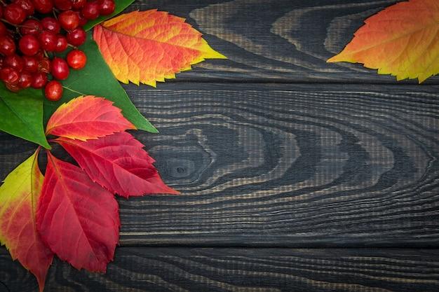 Rode viburnumbessen en herfstbladeren op zwarte planken