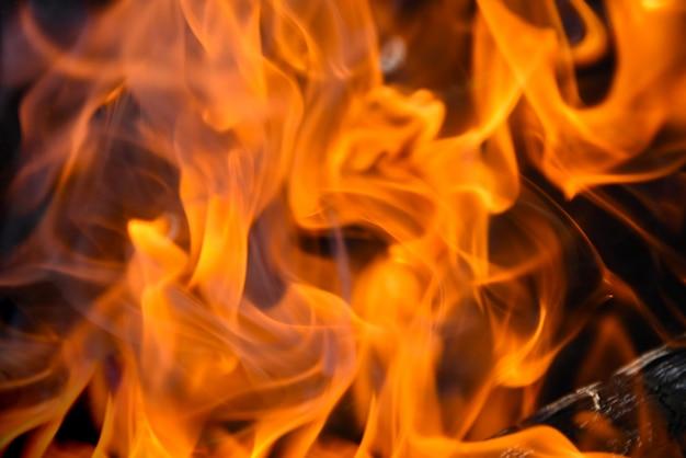 Rode vlammen van het vuur flitsen op uit het brandhout
