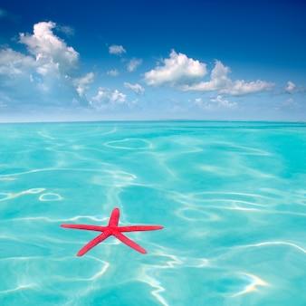Rode zeester die op perfecte tropische overzees drijft