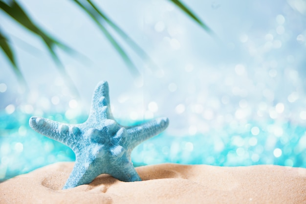 Rode zeester in een wit zand onder een palmblad