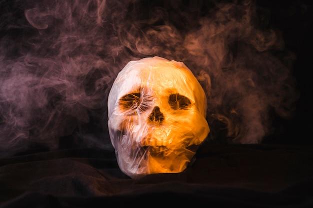 Rokerige schedel verpakt in een plastic zak