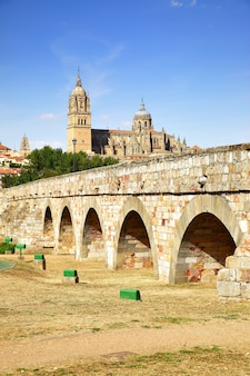 Roman brug en de kathedralen van salamanca, spanje. gefilterde afbeelding in retrostijl