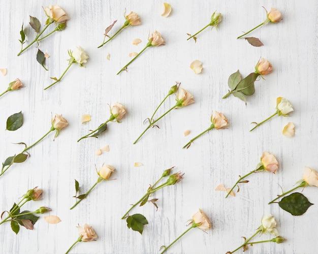 Romantische bloemenachtergrond met rozen