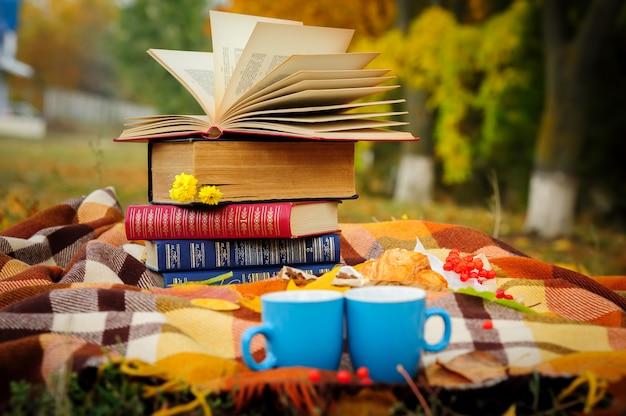 Romantische herfstpicknick