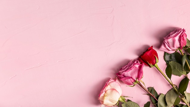 Romantische rozen met kopie ruimte