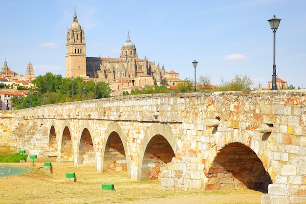 Romeinse brug en de kathedralen van salamanca, spanje