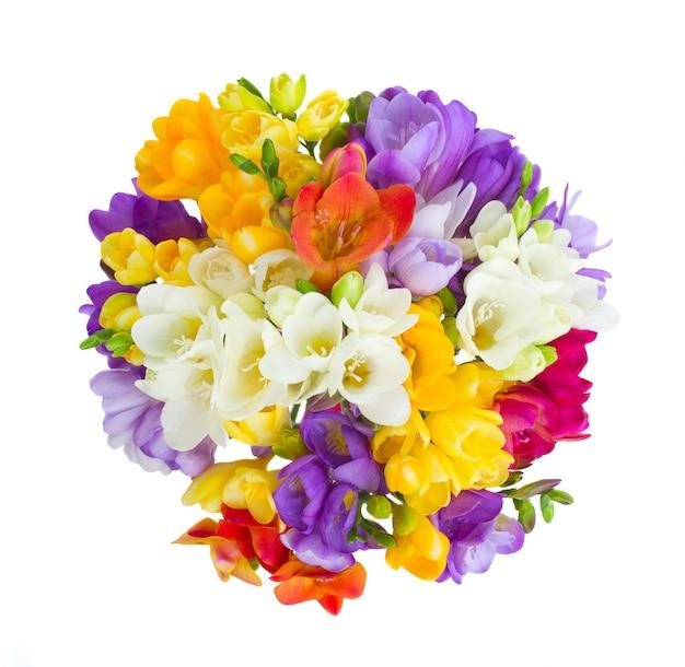 Rond boeket van fresia's bloemen geïsoleerd op wit