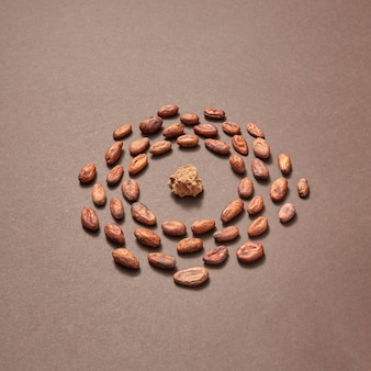 Rond frame van biologische cacaobonen en cacaomassa in het midden