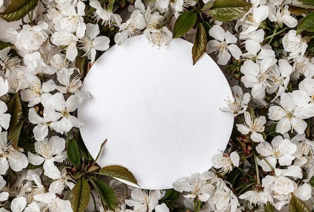 Ronde banner voor tekst omringd door witte bladeren van bloeiende kersen en groene bladeren. lente concept en kopieer ruimte voor felicitaties of vakantieverkoop.