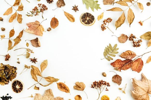 Ronde frame met lege ruimte van droge herfst herfstbladeren, bloemblaadjes en sinaasappels op wit oppervlak
