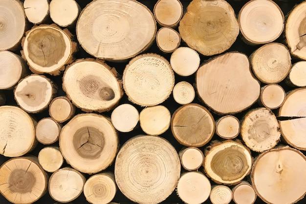 Ronde teak hout stomp achtergrond. de bomen sneden sectie voor achtergrondtextuur