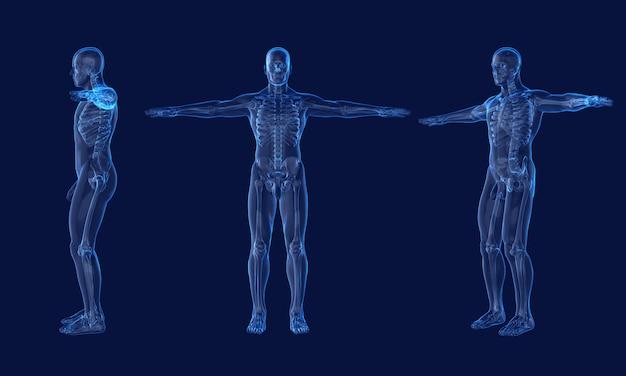 Röntgenfoto van menselijk mannelijk skelet