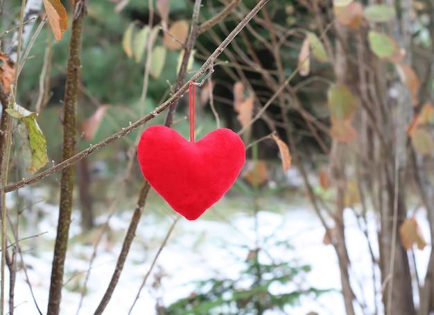 Rood decoratief pluchehart op boomtak in de herfstpark.