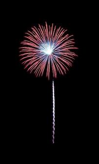 Rood en blauw geëxplodeerd vuurwerk dat op zwarte achtergrond wordt geïsoleerd