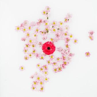 Rood en verschillende andere bloemen geïsoleerd op een witte achtergrond