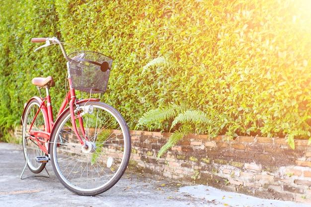 Rood fietsparkeren in de tuin