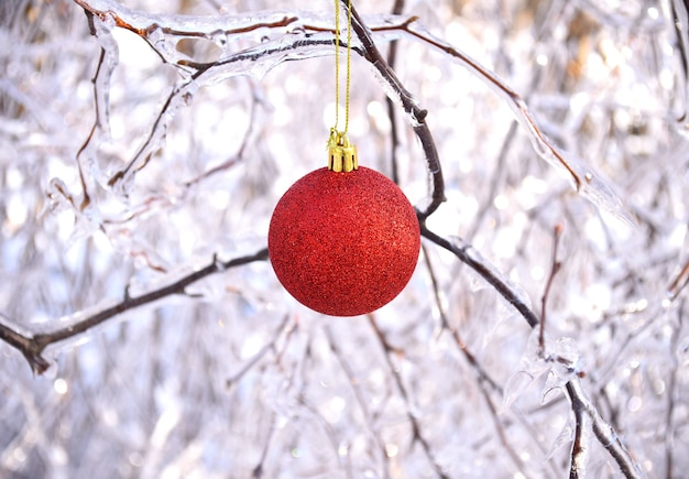 Rood kerstspeelgoed hangend aan bevroren takken van bomen bedekt met ijs
