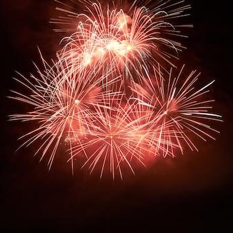 Rood kleurrijk vuurwerk op de zwarte hemelachtergrond