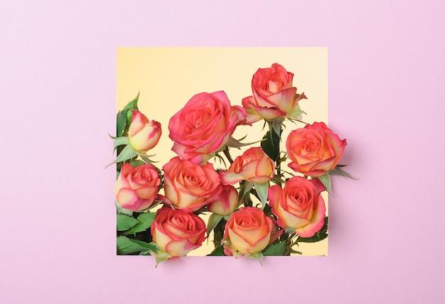 Roodgele rozen op een blauwe ondergrond in een roze vierkant frame