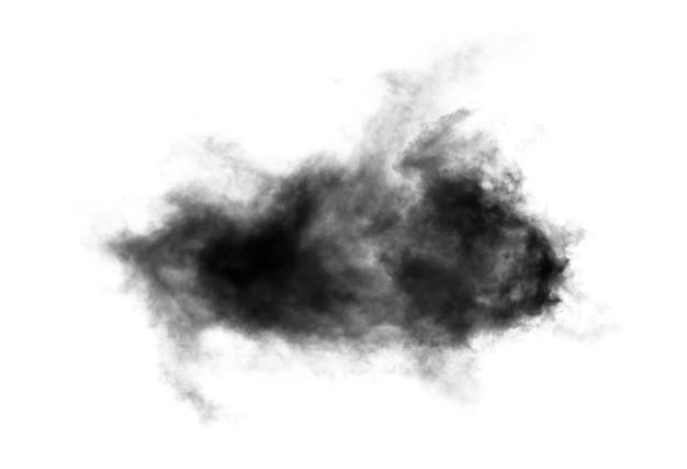 Rook geïsoleerd op wit