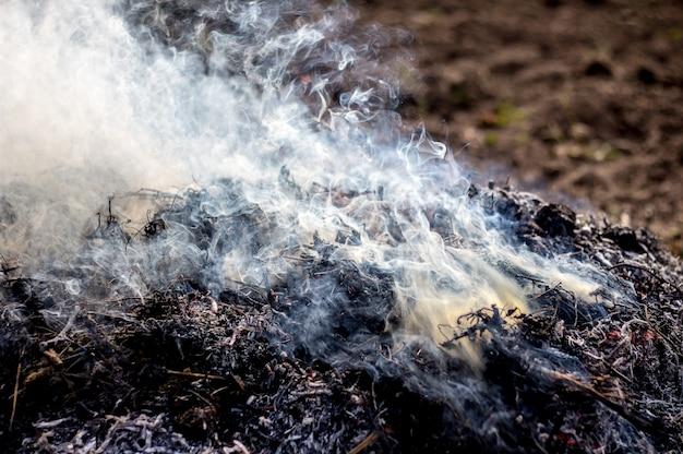 Rook van het verbranden van afval. vervuiling van het milieu