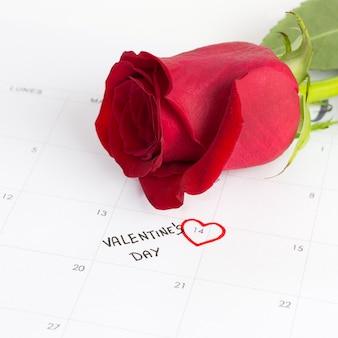 Roos en kalender voor valentijnsdag