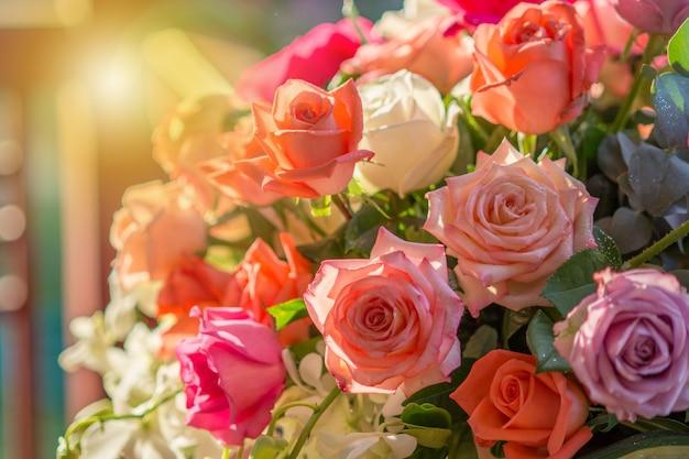 Roos en warm licht op tuinachtergrond, mooie momenten van liefde en gelukkig leven.