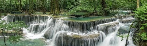 Ropical regenwoud bij srinakarin dam