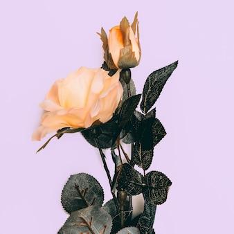 Rosa minimal style op een witte achtergrond.