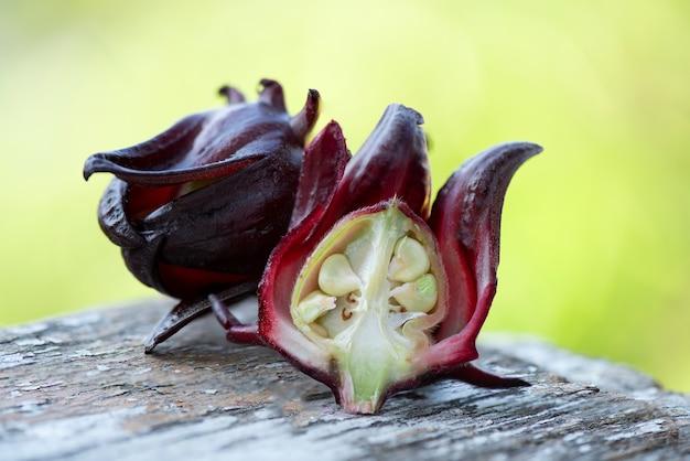 Rosella-vruchten op vage aard