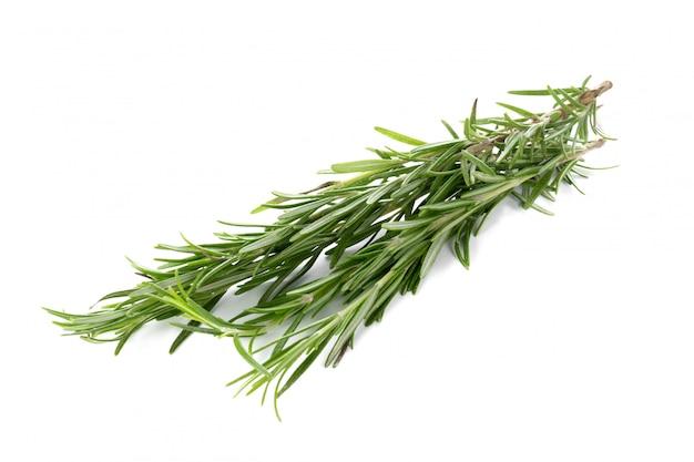 Rosemary op wit wordt geïsoleerd dat