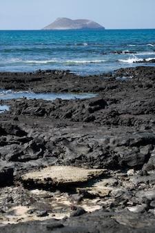 Rotsachtig strand in de galapagos-eilanden
