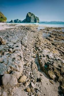 Rotsachtige kustlijn van tropisch landschap tijdens eb. el nido, palawan, filippijnen.