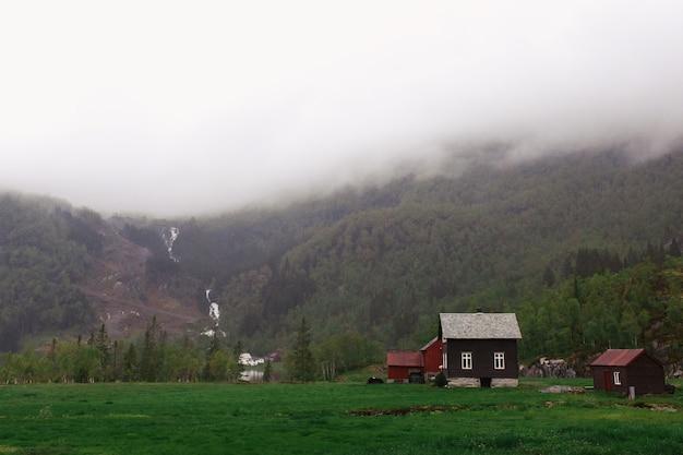 Rotsen bedekt met groen en dichte mist