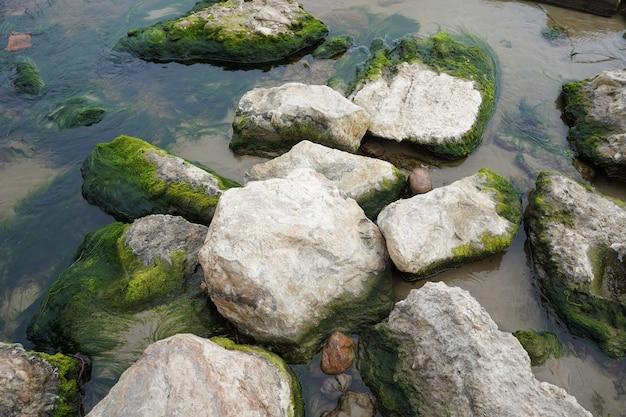 Rotsen bedekt met mos in de rivier
