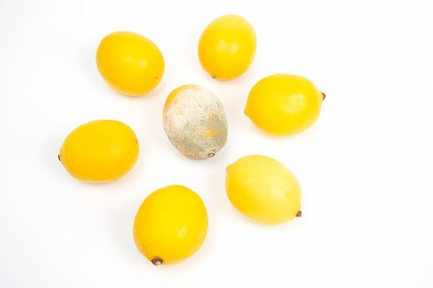 Rotte citroen naast verse citroenen op een wit