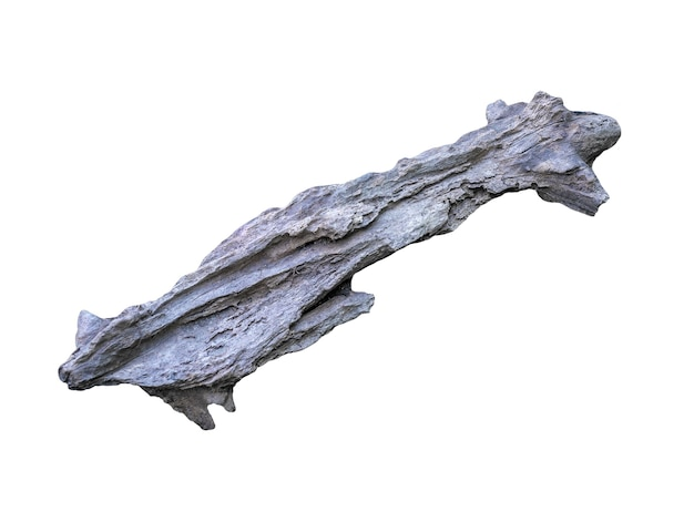 Rotte houten geïsoleerd op wit