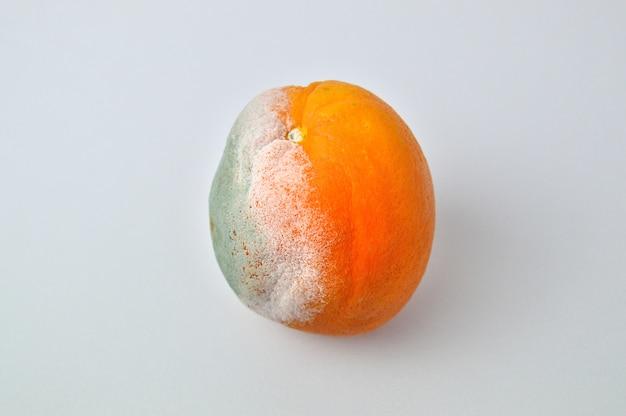 Rotte sinaasappel op wit