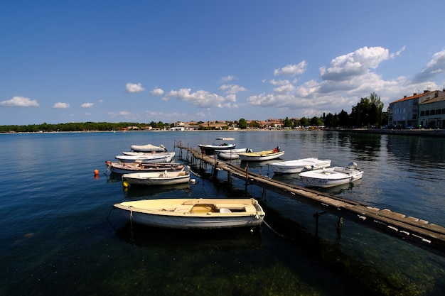Rovinj zomertijd in de kust van kroatië