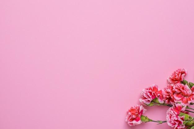 Roze behang met roze bloemen