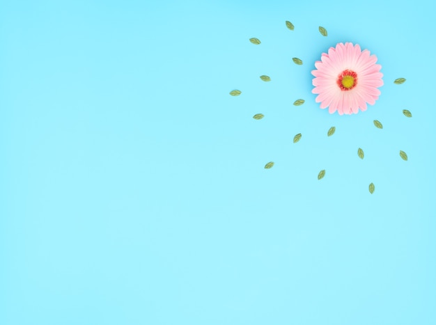 Roze bloem met groene bladeren op blauwe achtergrond.