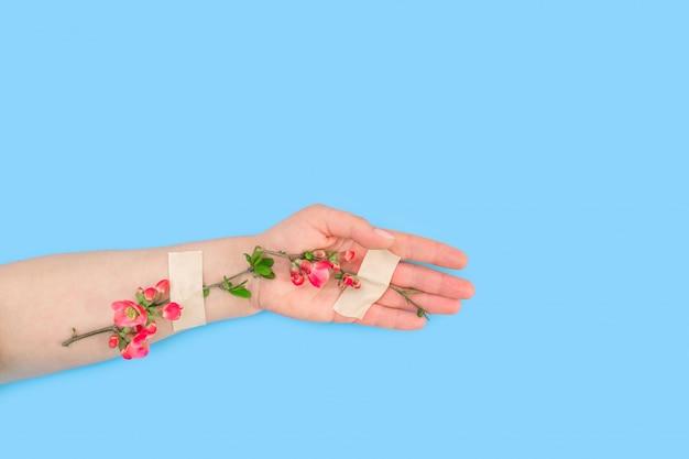 Roze bloem plakband hand blauwe lente patch witte achtergrond