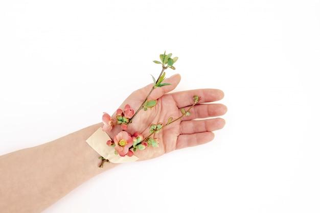 Roze bloem plakband hand voorjaar patch witte achtergrond