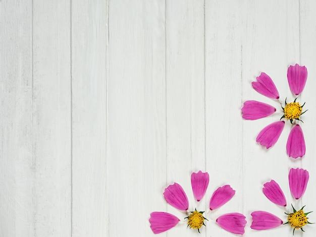 Roze bloemblaadjes van een mooie bloem