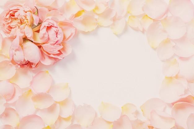 Roze bloemen en bloemblaadjes op wit oppervlak