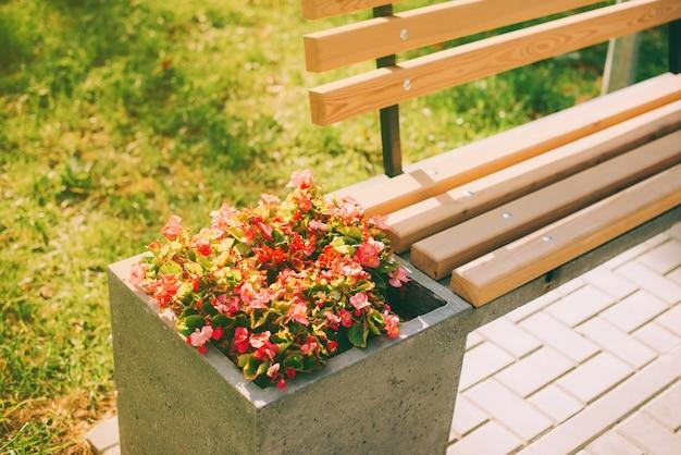 Roze bloemen in de buurt van een houten bankje in het park