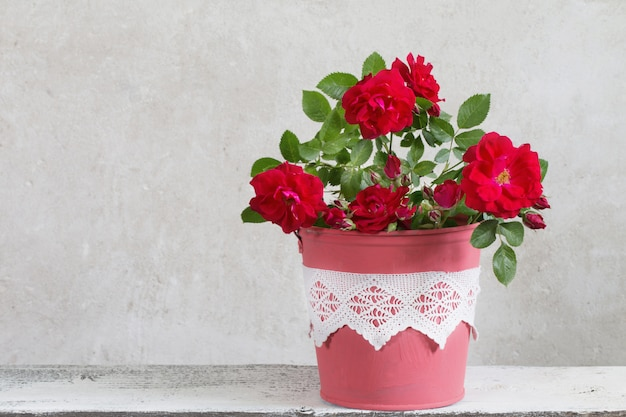 Roze bloemen in emmer op grijze achtergrond