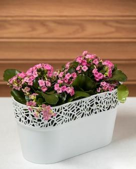 Roze bloemen op de tafel